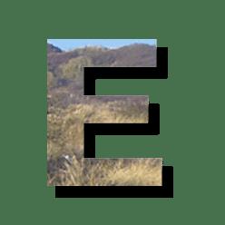 Seo Lexikon und Glossar - Buchstabe E